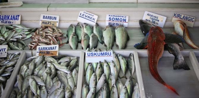 Denizlerdeki bolluk, tezgahlarda çeşitliliği arttırdı