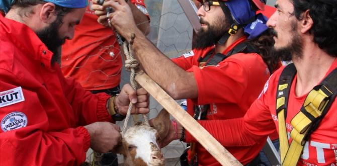 Kuyuya düşen keçiyi AKUT ekipleri kurtardı