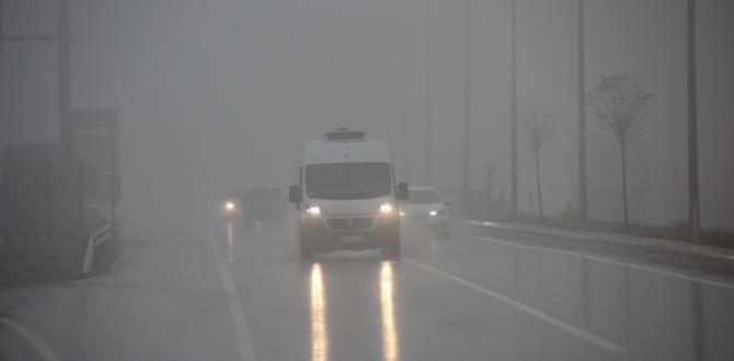 Tekirdağ'da yoğun sis