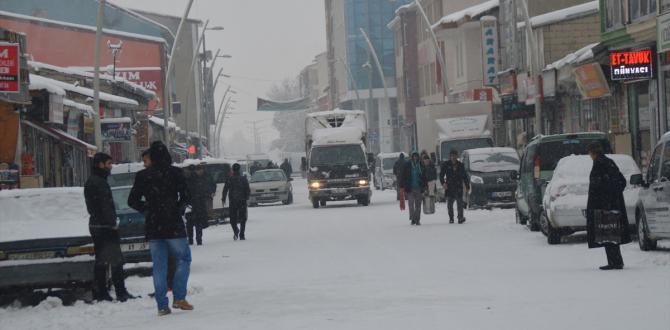 Meteoroloji uyardı! Kar yağışı ve yağmura dikkat