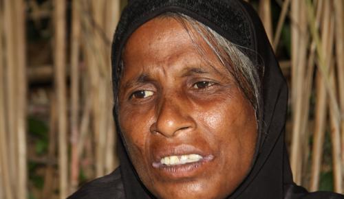 Arakanlı Menisa, Myanmar askerlerinin zulmünü anlattı