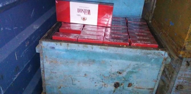 Arı kovanında kaçak sigara sevkıyatı