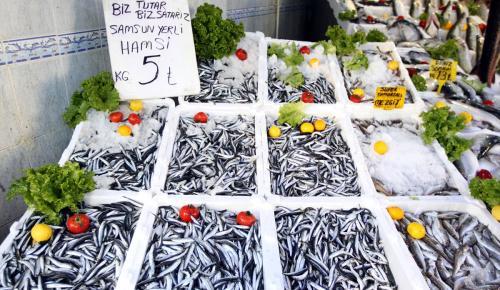 Fırtına dindi, balık fiyatları düştü