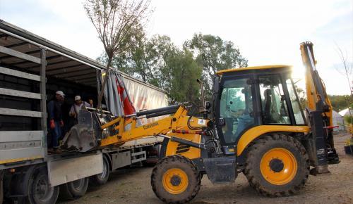 Muğla'dan KKTC'ye süs bitkisi fidanı