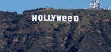 Hollywood yazısını Hollyweed olarak değiştirdiler