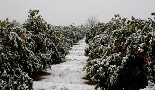 Antalya'da kar, kartpostallık görüntüler oluşturdu
