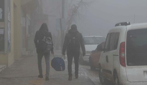 Ağrı ve Ardahan'da yoğun sis