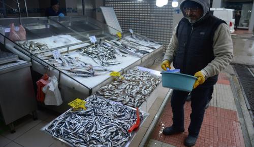 """Balık fiyatlarına """"kar"""" zammı"""