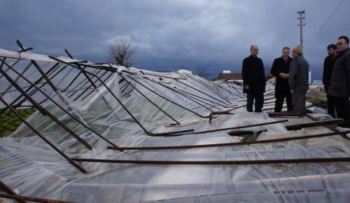 İzmir'deki seralarda ağır hasar