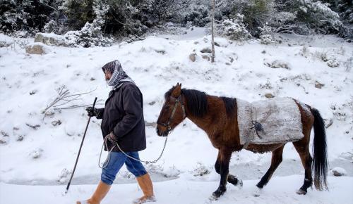 Kar yağınca keçi sürüsünü kaybetti