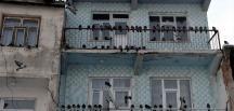 Kışın güvercinlerin yemi esnaftan