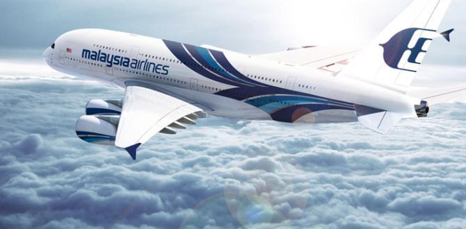 Kayıp Malezya uçağı bulunamadı! Artık aranmayacak