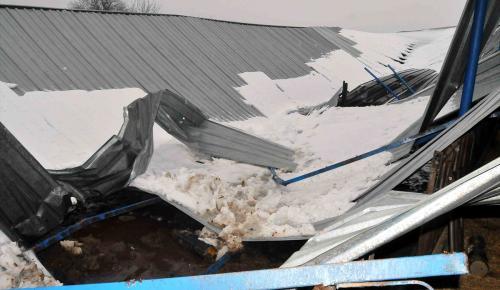 Muğla'da kar nedeniyle çiftlik çatısı çöktü