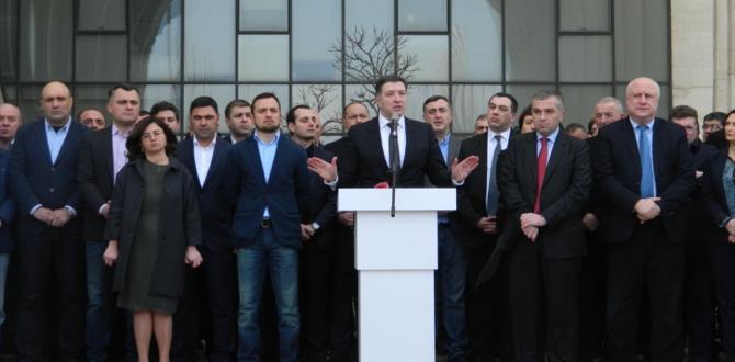 Saakaşvili'nin partisinde çatlak